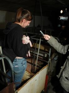 Deirdre Sims holds one lucky piglet.