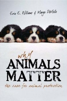 why_animals_matter_medium_rwcz1