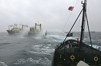 Japanese whaling vessel the Nisshin Maru fires its water cannons as the Steve Irwin chases in Antarctica's Ross Sea. A harpoon whaling vessel sails nearby in the background. Photo by Adam Lau/Sea Shepherd Conservation Society