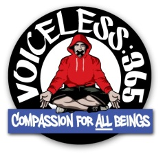 voiceless365