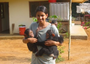 Sangu_with_chimps