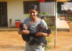Sangu_with_chimps