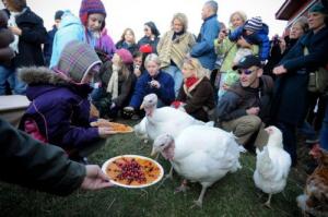 Photo by Jo-Anne McArthur/Farm Sanctuary