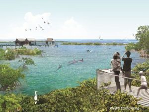 Dolphin sanctuary rendering