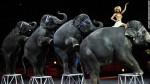 150305125126-17-ringling-elephants-exlarge-169